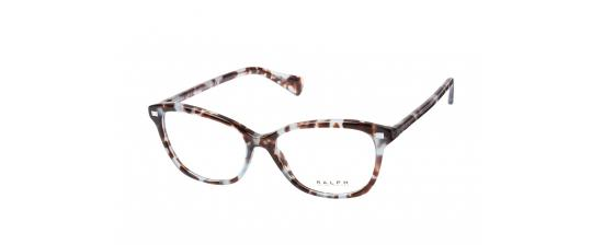 Eyeglasses Polo Ralph Lauren 7092