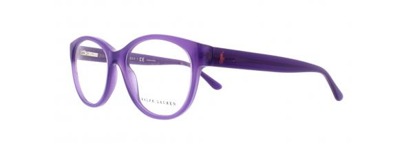 Eyeglasses Polo Ralph Lauren 6104